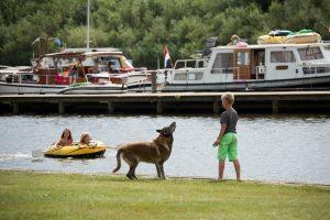 vakantie Friesland met hond
